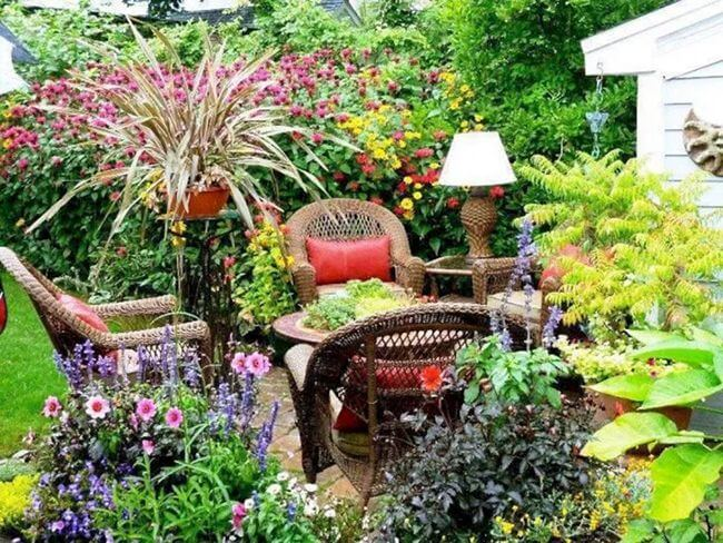 Colorful Plants to Decorate Your Garden Ideas