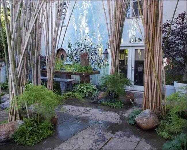 35+ Fantastic Gardening Ideas With Bamboo Trees For Creating A Picturesque Landscape