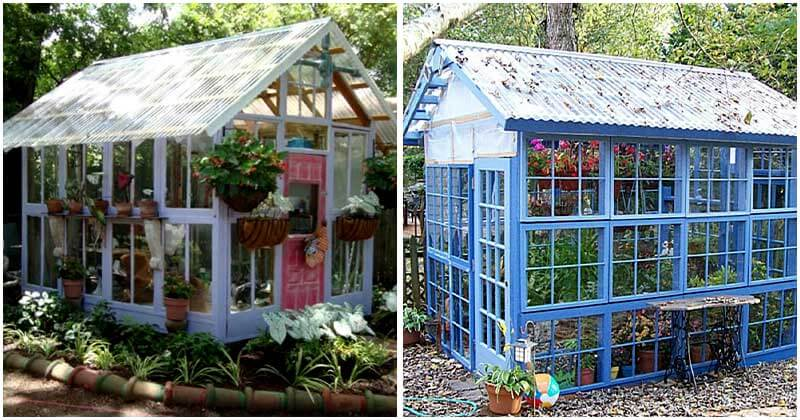 10-Ideas-To-Turn-Old-Windows-and-Doors-Into-Greenhouses-ft