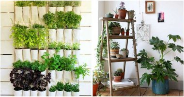 15-Amazing-Ideas-For-DIY-Vertical-Indoor-Gardens-ft