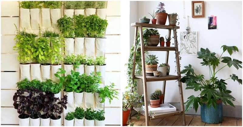 15-Amazing-Ideas-For-DIY-Vertical-Indoor-Gardens-ft