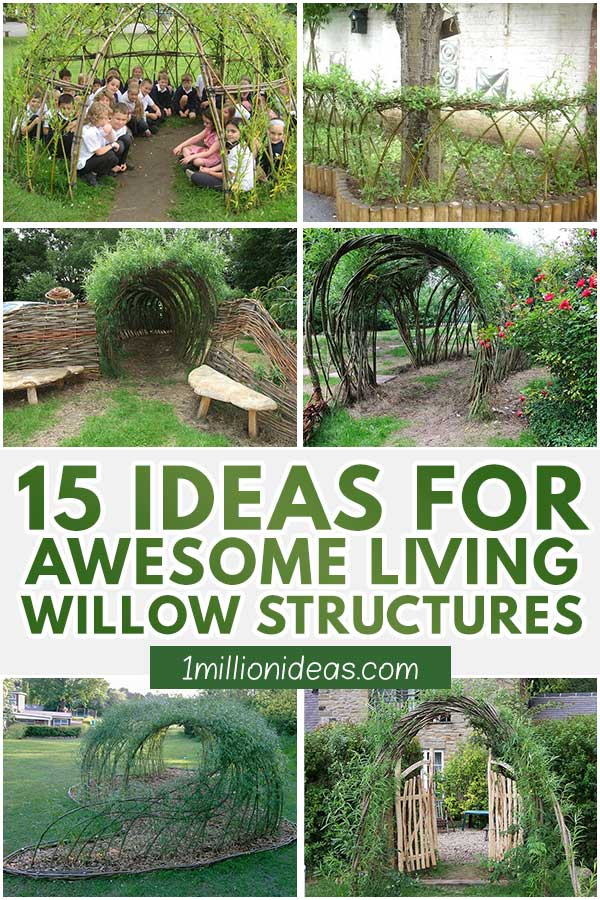 15 Ideas For Awesome Living Willow Structures