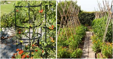 20-Best-Ideas-For-DIY-Garden-Trellis-ft