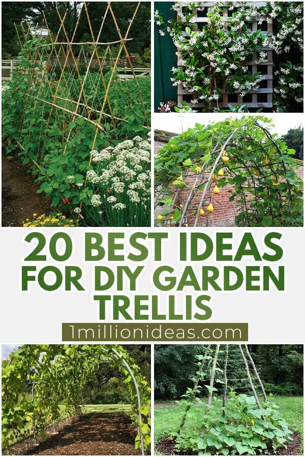 20 Best Ideas For DIY Garden Trellis