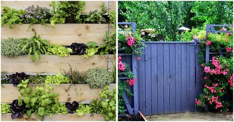 20-Easy-DIY-Garden-Projects-For-Pallet-Fence-ft