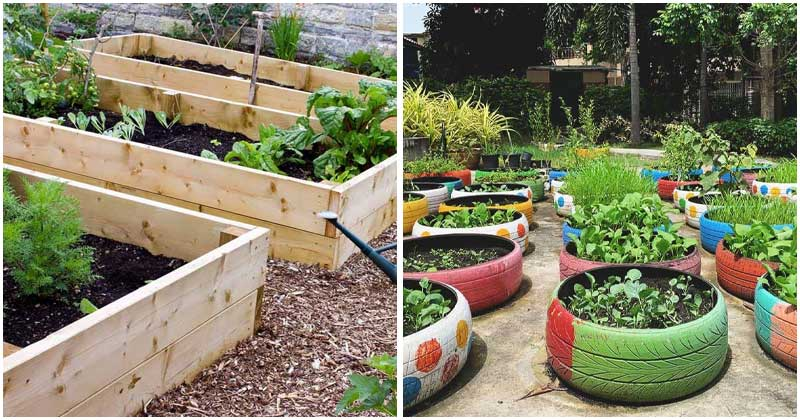 25-Beautiful-Raised-Bed-Gardens-For-DIY-Projects-ft