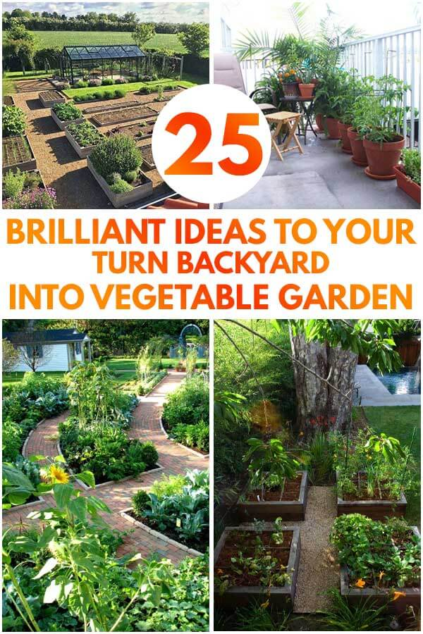 25 Brilliant Ideas To Your Turn Backyard Into Vegetable Garden
