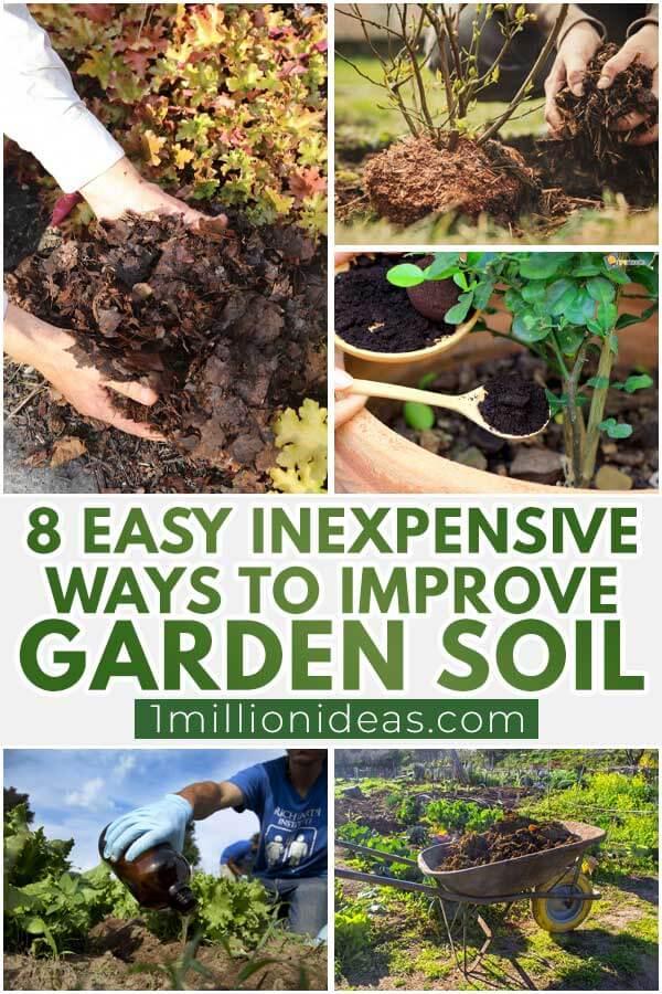 8 Easy Inexpensive Ways To Improve Garden Soil