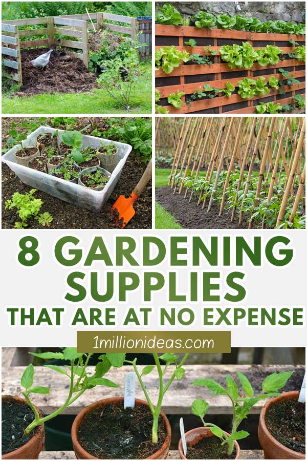 8 Gardening Supplies That Are At No Expense