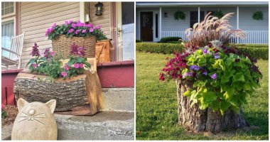 How To Turn Old Logs Into Brilliant DIY Planters?