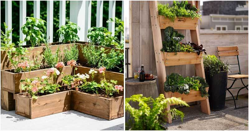 10 Best Ideas For Deck Vegetable Garden, Deck Vegetable Garden