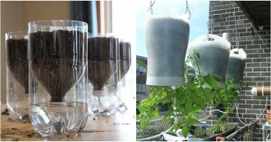 14 Best Ideas For Self-Watering Container garden