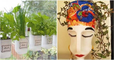 15 Best DIY Garden Projects With Plastic Milk Containers