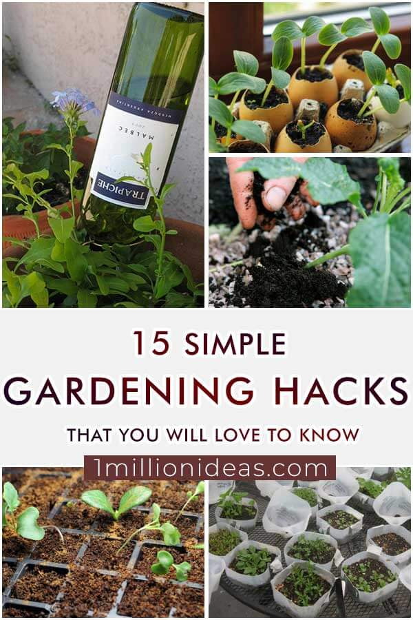 15-Simple-Gardening-Hacks-That-You-Will-Love-To-Know
