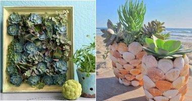 18 Brilliant DIY Succulent Indoor Gardens