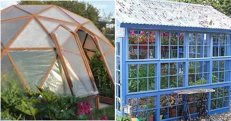 19 Beautiful Greenhouses For Your Backyard