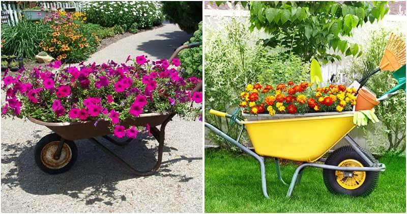 20 Awesome Ideas For Wheelbarrow Planters