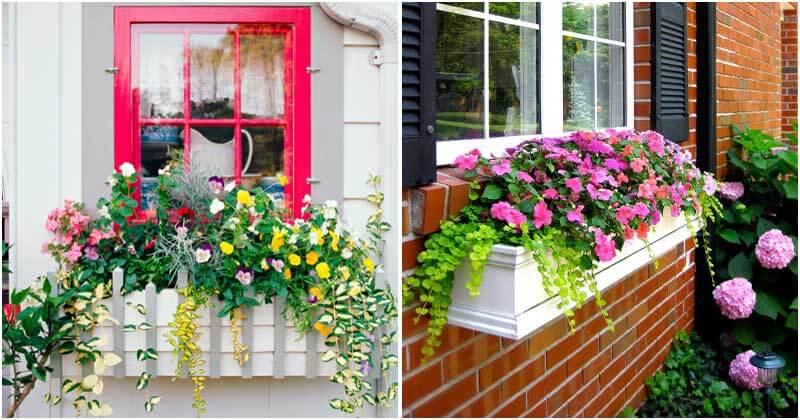 10-Stunning-Flower-Window-Box-Planters-ft1