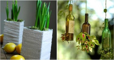 15 Creative Container Ideas To Grow Your Favorite Plants