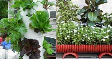 15 DIY PVC Pipe Planters