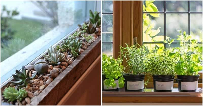 15-Inspiring-Windowsill-Garden-Ideas-You-Should-Try-ft