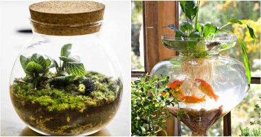 17-Inspiring-DIY-Indoor-Water-Garden-Ideas-ft
