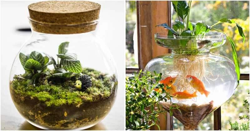 17-Inspiring-DIY-Indoor-Water-Garden-Ideas-ft