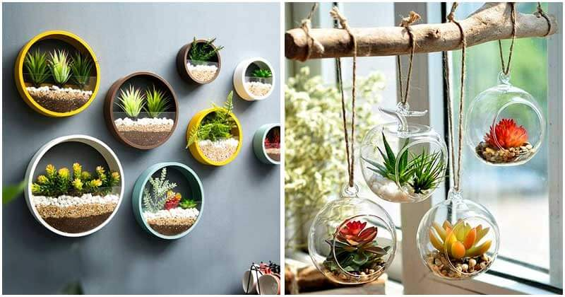 20-Fabulous-Round-Hanging-Wall-Planters-ft