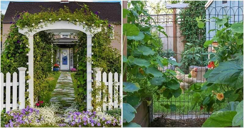 20-Fantastic-Ideas-For-Garden-Fence6-ft
