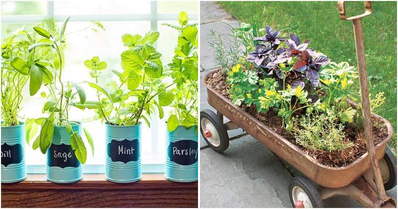 30-Cool-DIY-Herb-Planters-That-Inspire-All-ft1