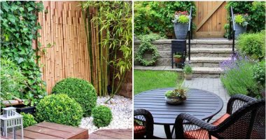 Gardening Tips To Take Advantage Of Maximum Your Small Spaces