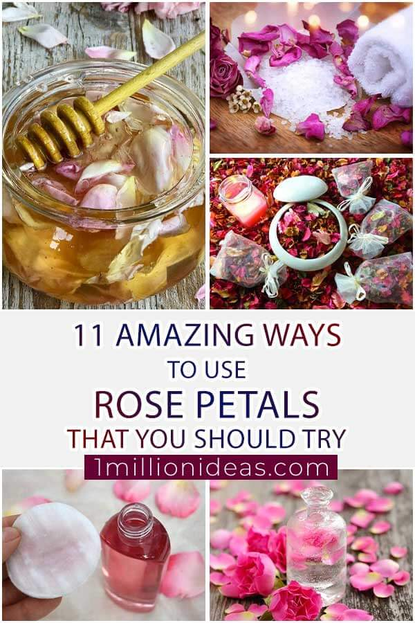 11 Amazing Ways To Use Rose Petals That You Should Try