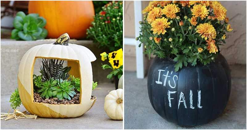 14 Amazing DIY Pumpkin Flower Planter Ideas For Your Fall