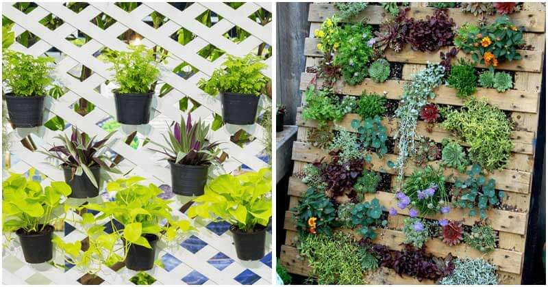 20-Easy-DIY-Vertical-Gardens-To-Proceed-Any-Time-ft