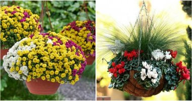 20 Stunning Hanging Basket Ideas To Decorate In The Fall