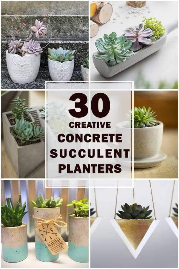 30-Cool-DIY-Concrete-Succulent-Planters-ft1