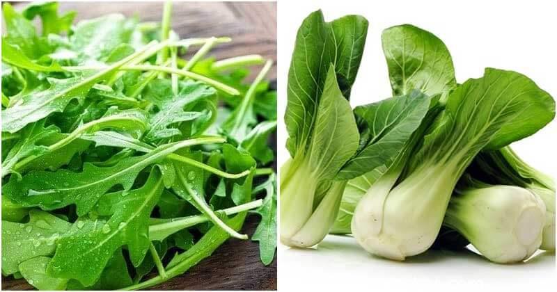 Best Vegetables Grow Well on Railings