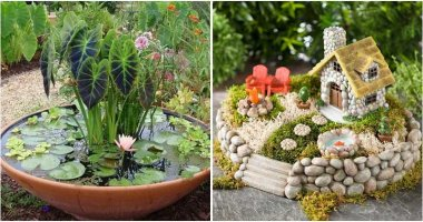 Creative And Trendy Vegetable Garden Ideas That Everyone Will Love