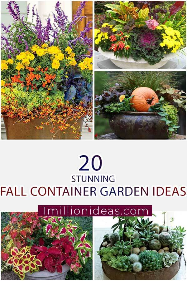 Stunning Fall Container Garden Ideas