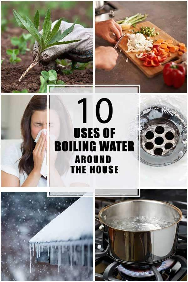 10 Best Uses Of Boiling Water Around The House