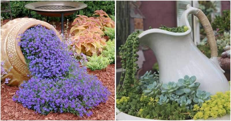 10 Fragrant Flower Planters For Your Garden