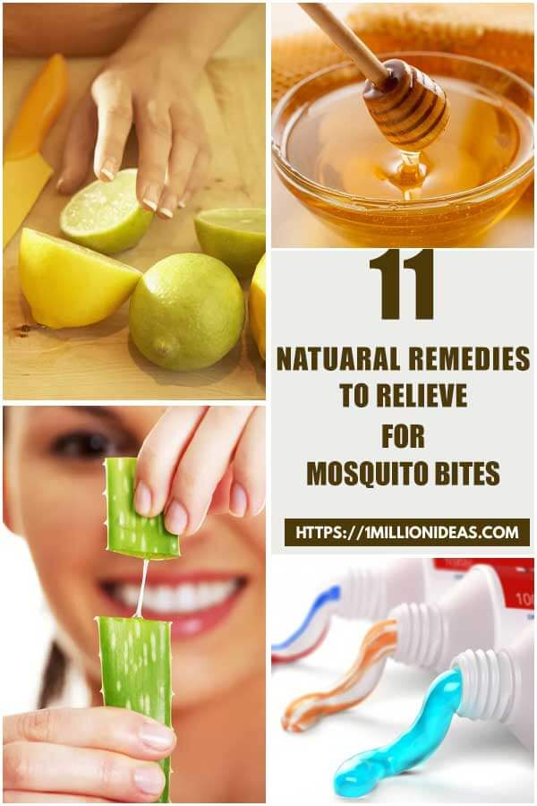 11 Natural Remedies To Relieve For Mosquito Bites