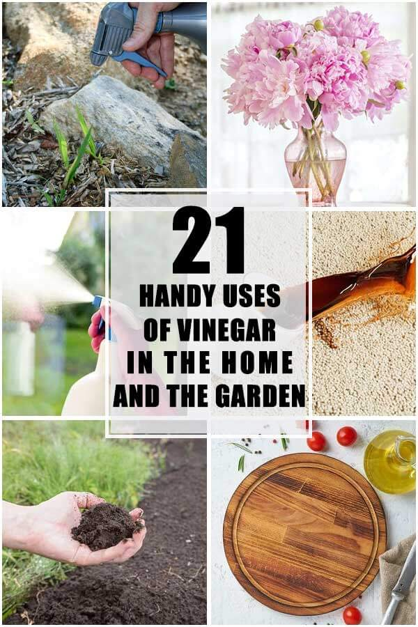 21 Handy Uses Of Vinegar In The Home And In The Garden