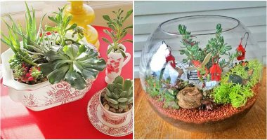 28 Cute DIY Indoor Gardening Ideas