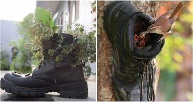 7 Old Shoe Hacks In The Garden