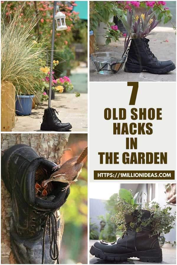 7 Old Shoe Hacks In The Garden