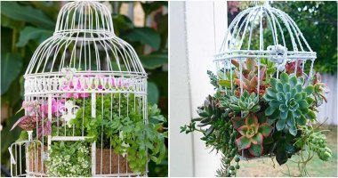 9 Cute DIY Bird Cage Planter Ideas In The Garden