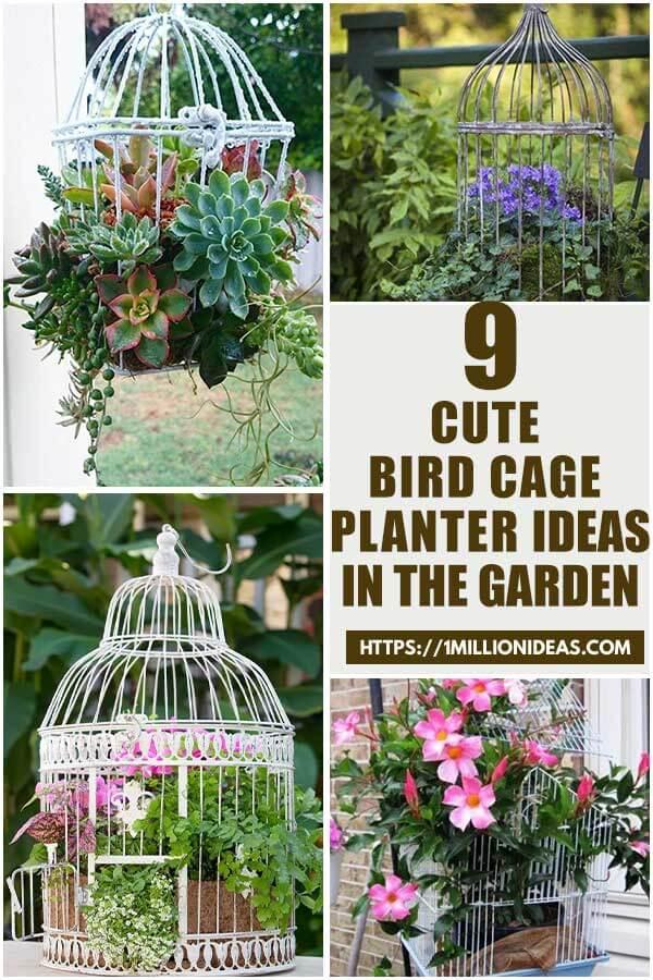 9 Cute DIY Bird Cage Planter Ideas In The Garden