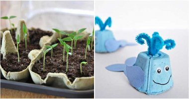 Creative Ways To Use Egg Cartons