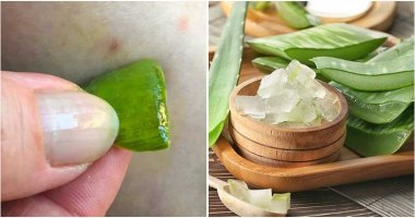Good Ways to Use Aloe Vera